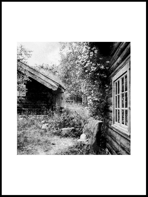 Fairytail In Hjartdal
