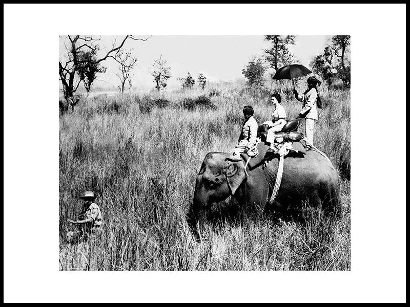 Dronning Elizabeth II På Tigerjakt, 1961
